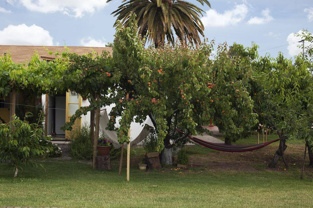 Hotel Casa Pando_Hotel Casa Pando
